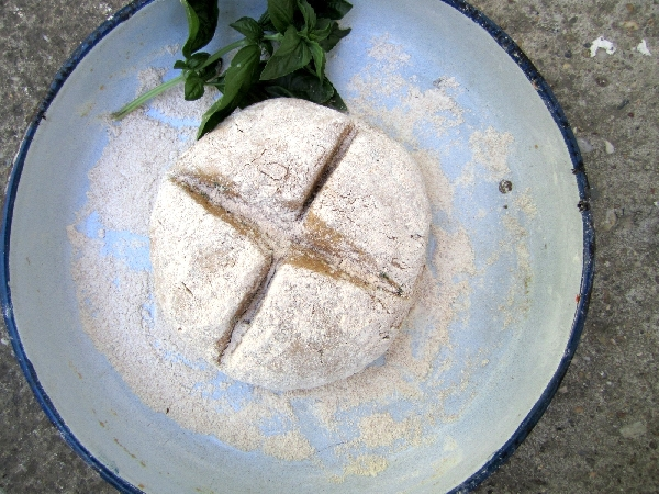 Einkorn Soda Bread with Basil and Garlic
